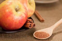 Noix de muscade en poudre avec les pommes et la cannelle Photo stock