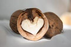 Noix en forme de coeur Célébration de jour de valentines Conception d'amour Couleur modifiée la tonalité Images stock