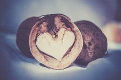 Noix en forme de coeur Célébration de jour de valentines Conception d'amour Couleur modifiée la tonalité Photographie stock