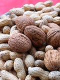 Noix et arachides Photos stock