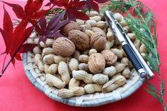 Noix et arachides Photo stock