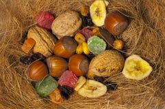 Noix et fruits secs photo stock