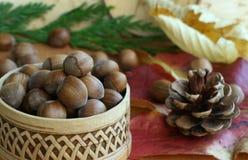 Noix et lames d'automne en bois Photographie stock libre de droits