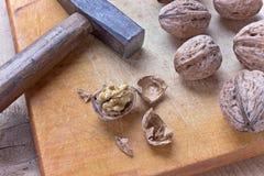 Noix et marteau criqués Image stock