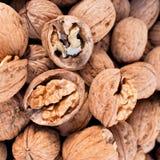 Noix et plan rapproché secs de coquilles de noix Image stock