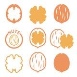 Noix, icônes de coquille de noix réglées Photographie stock libre de droits
