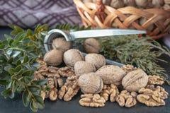 Noix, noyaux de noix Nourriture saine de noix images libres de droits