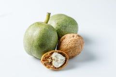 Noix vertes fraîches dans la peau juste de l'arbre Noix sur un fond blanc Macro Photos stock
