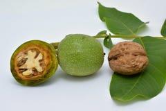 Noix vertes mûres et disséquées avec des feuilles images stock