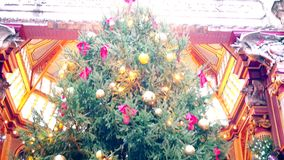 Noël Panorama d'un arbre de Noël coloré banque de vidéos