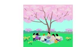 Nolla-Hanami-blomning festival och beundra Sakuraen i Japan royaltyfri bild