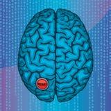 Nollställa din hjärna Arkivbild