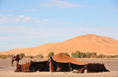 The nomad (Berber) tent. In the Sahara, Morocco Stock Photos