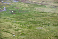 Nomad camp in the Chuya steppe, Altai Mountains Royalty Free Stock Photo