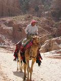 Nomad in the desert. A Jordanian Arab seated on camel in the desert near Petra Royalty Free Stock Photos