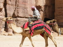 Nomad in the desert. A Jordanian Arab seated on camel in the desert near Petra Royalty Free Stock Photo