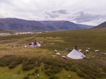 Nomad herding camp in the summer. Yamal, Russia. Shooting from the drone stock photo