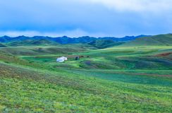Free Nomad Life Of Mongolian On Savanna Royalty Free Stock Images - 124983759