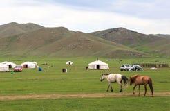 Free Nomad Life Of Mongolian On Savanna Stock Photos - 125059063
