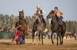 Nomad men wrestling on horseback, one rider has fallen off his horse Stock Photography