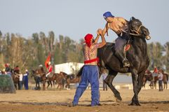 Nomad men after a wrestling match on horseback, loser congratulating the winner Royalty Free Stock Photo