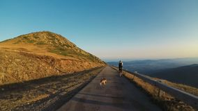 Adventurer man and his dog walk on road. Nomad millennial traveler with backpack gear walks explores mountain summit on windy evening with beautiful sunset, his stock footage