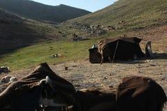 Nomad. Ic Turkmen chosen lifestyle Stock Photos