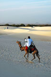 Nomad riding a camel in the desert Stock Image