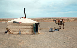 Nomad Tent and Camel. Nomad Ger Camp and Camel in the Gobi Desert, Mongolia Royalty Free Stock Photos