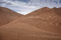 Nomad Valley in Atlas Mountains, Morocco Stock Photo