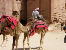 Nomade dans le désert Image stock