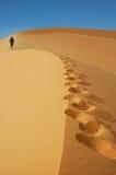 Nomade, der herauf eine Sanddüne im Sahara geht Stockfotografie