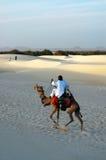 Nomade die een kameel in de woestijn berijdt Stock Afbeelding