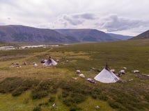 Nomade het hoeden kamp in de zomer stock foto