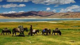 nomaden lizenzfreie stockfotos
