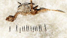 Nomader från ovannämnt med fossilet Royaltyfri Foto