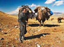 Nomadi mongoli Immagine Stock