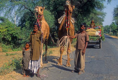 Nomadic family with camels and wagon Royalty Free Stock Images