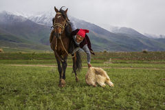 Nomadic horse games. Stock Photo