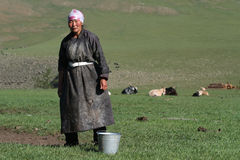 Nomadic woman ready for the milking of the yaks Royalty Free Stock Photos
