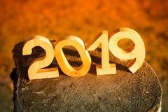 Nombre en bois 2019 Bonne année 2019 photographie stock