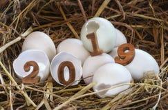 Nombre en bois 2019 sur la coquille d'oeuf Photo libre de droits