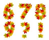 Nombres et signes de ponctuation faits à partir des feuilles d'automne Photos stock
