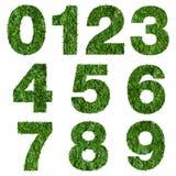 chiffres 1 2 3 4 de pelouse verte illustration stock illustration du pr vert 46563810. Black Bedroom Furniture Sets. Home Design Ideas