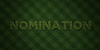 NOMINATION - fresh Grass letters with flowers and dandelions - 3D rendered royalty free stock image. Can be used for online banner ads and direct mailers Stock Images
