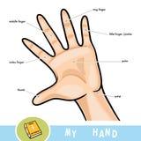 Noms communs pour des doigts de main illustration de vecteur