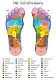 Noms d'Allemand de Tableau de réflexothérapie de pied illustration stock