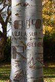 Noms, dates et messages de gravures sur le tronc d'arbre Photographie stock libre de droits
