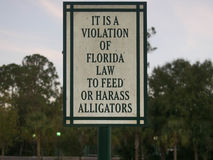 Non alimenti o non tormenti il segno dell'alligatore Fotografia Stock