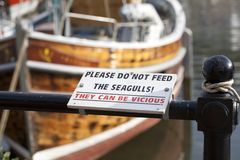 Non alimenti prego i gabbiani che possano essere contrassegno vizioso immagini stock libere da diritti